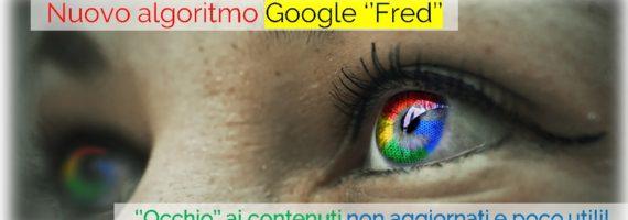 Algoritmo Google Fred penalizzazioni