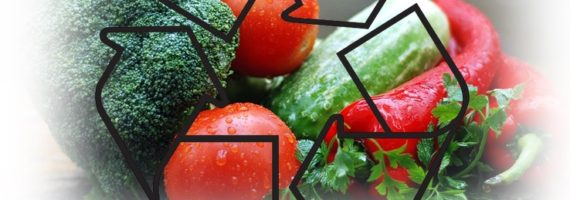 recupero distribuzione generi alimentari