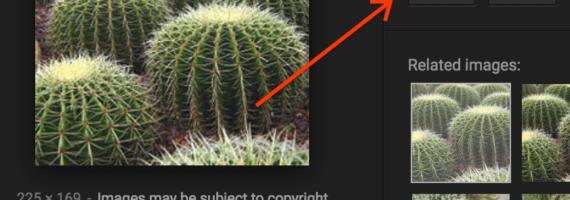 Modifiche ricerca immagini Google rimozione bottone visualizza immagine