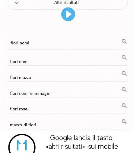 google lancia il tasto altri risultati sui mobile