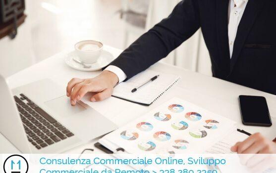 Consulenza Commerciale Online, Sviluppo Commerciale da Remoto