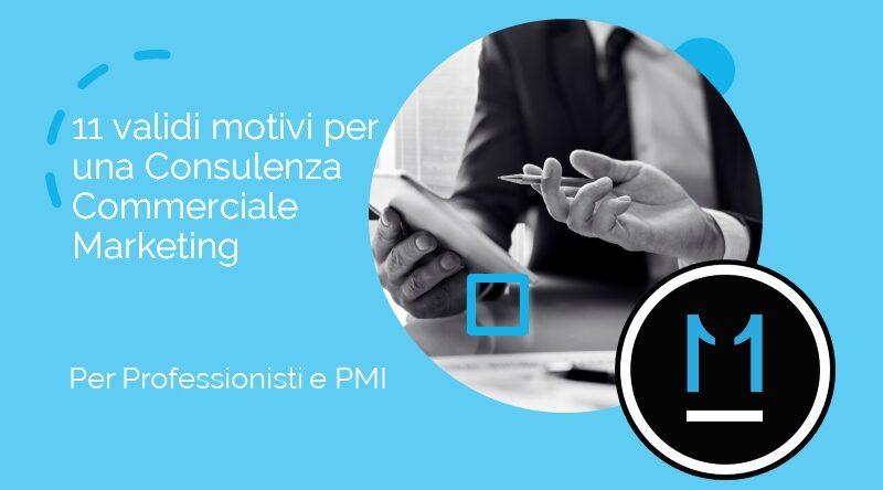 Consulenza Commerciale e Marketing