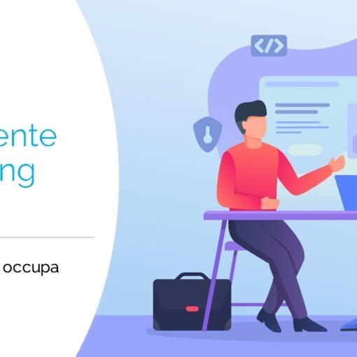 Consulente Marketing Digitale,cosa fa? Di cosa si occupa? Quanto guadagna?